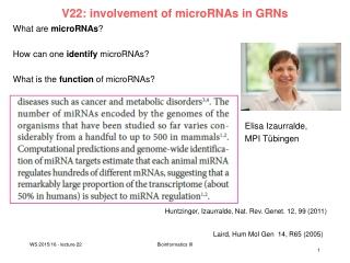 small RNA     RNA RNA silencing