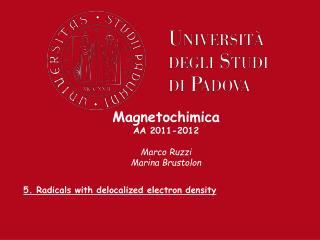 Magnetochimica AA 2011-2012  Marco Ruzzi Marina Brustolon