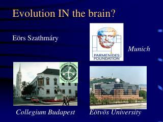 Evolution IN the brain