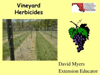 Vineyard  Herbicides