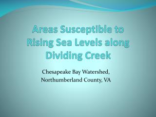 Areas Susceptible to  Rising Sea Levels along Dividing Creek