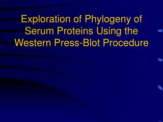 Exploration of Phylogeny of Serum Proteins Using the Western Press-Blot Procedure