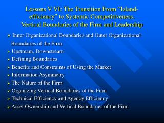 Lessons V VI: The Transition From  Island-efficiency  to Systemic Competitiveness.  Vertical Boundaries of the Firm and