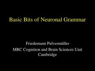 Basic Bits of Neuronal Grammar