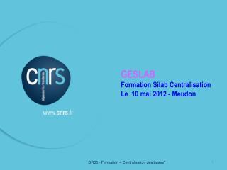 GESLAB Formation Silab Centralisation Le  10 mai 2012 - Meudon
