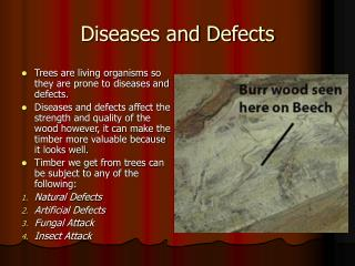 Diseases and Defects