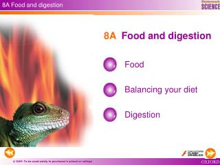 8A  Food and digestion