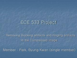 ECE 533 Project