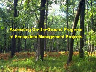 Assessing On-the-Ground Progress  of Ecosystem Management Projects