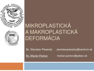 Mikroplastick   a makroplastiCk  deform cia