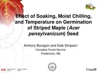 Effect of Soaking, Moist Chilling, and Temperature on Germination of Striped Maple Acer pensylvanicum Seed