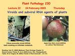 Plant Pathology 230  Lecture 22       24 February 2005           Thursday