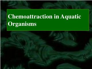Chemoattraction in Aquatic Organisms