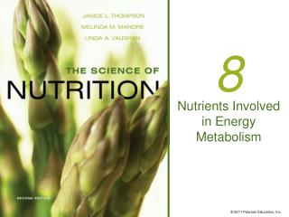 Nutrients Involved in Energy Metabolism