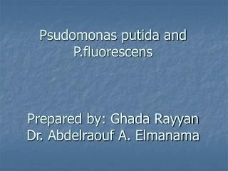 Psudomonas putida and P.fluorescens    Prepared by: Ghada Rayyan Dr. Abdelraouf A. Elmanama