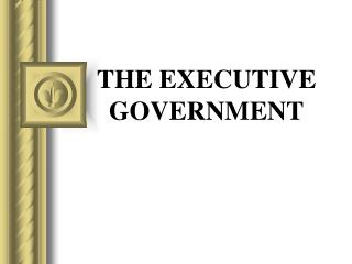 THE EXECUTIVE GOVERNMENT