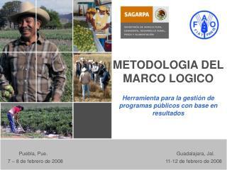 METODOLOGIA DEL  MARCO LOGICO  Herramienta para la gesti n de programas p blicos con base en resultados