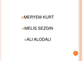 MERYEM KURT  MELIS SEZGIN  ALI ALODALI