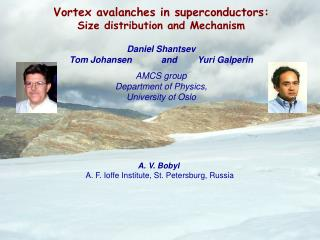 Vortex avalanches in superconductors: Size distribution and Mechanism