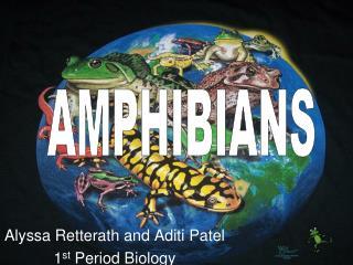 Alyssa Retterath and Aditi Patel 1st Period Biology