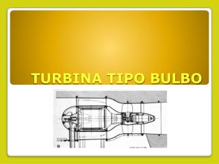 TURBINA TIPO BULBO