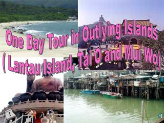 One Day Tour in Outlying Islands  Lantau Island, Tai O and Mui Wo