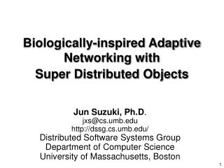 Biologically-inspired Adaptive  Networking with Super Distributed Objects
