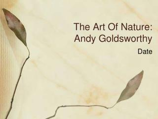 The Art Of Nature: Andy Goldsworthy