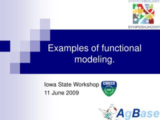Examples of functional modeling.