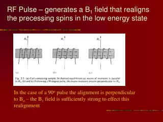 RF Pulse   generates a B1 field that realigns the precessing spins in the low energy state