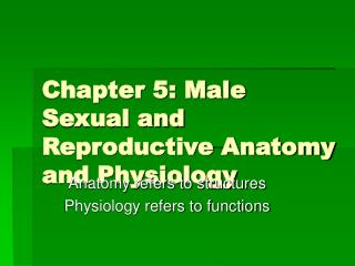 Chapter 5: Male Sexual and Reproductive Anatomy and Physiology
