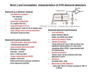Short  and incomplete  characteristics of CVD diamond detectors