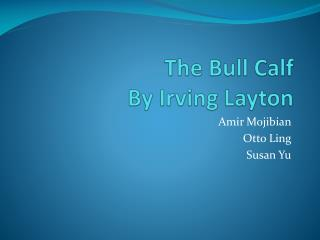 The Bull Calf  By Irving Layton
