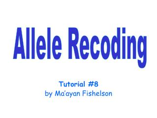 Tutorial 8 by Ma ayan Fishelson