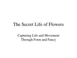 The Secret Life of Flowers