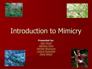 Introduction to Mimicry