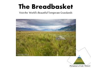 The Breadbasket Visit the  World s Beautiful Temperate Grasslands