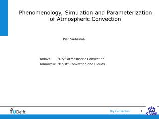 Phenomenology, Simulation and Parameterization of Atmospheric Convection