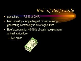 Role of Beef Cattle
