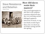 Slave Reisistance and Rebellion Angella Chang