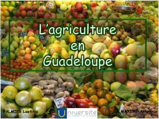 L agriculture  en  Guadeloupe