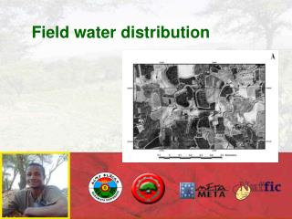Field water distribution