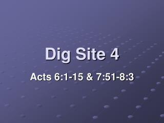Dig Site 4