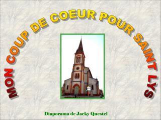 MON COUP DE COEUR POUR SAINT LYS