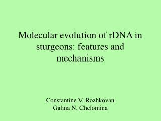 Molecular evolution of rDNA in sturgeons: features and mechanisms