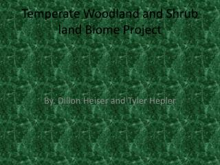 Temperate Woodland and Shrub land Biome Project
