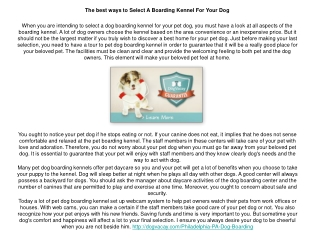 Pet Sitting New York