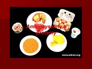 Aminokyseliny a prote ny