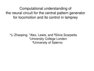 Computational understanding of the neural circuit for the central pattern generator for locomotion and its control in la
