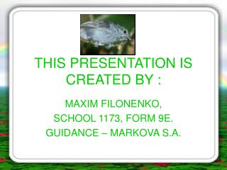 THIS PRESENTATION IS CREATED BY :